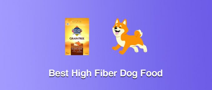 Best High Fiber Dog Food