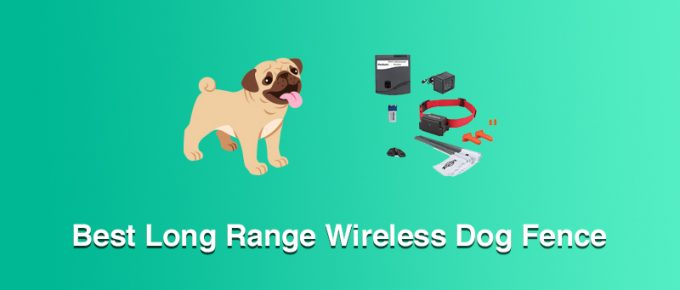Best Long Range Wireless Dog Fence